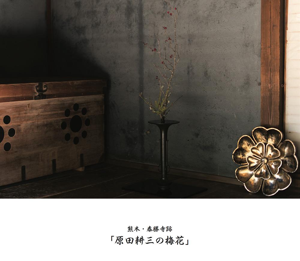 H.V-1(原田耕三の梅花)